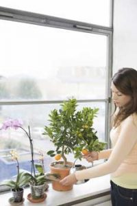 Tips for improving your air quality| Indoor Air Quality Specialist Greenville SC