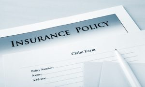 Insurance Policies and Mold Removal | Greenville SC